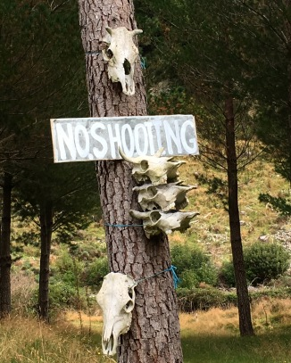 Weird as signage/art project in the woods...